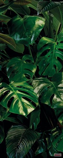 Фотообои Тропики листья