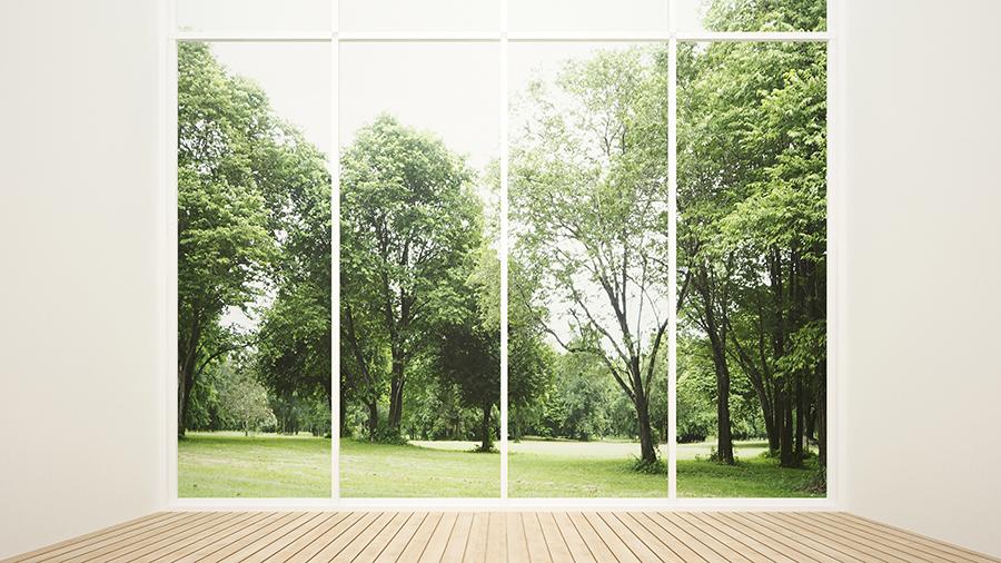 Фотообои Окно в сад
