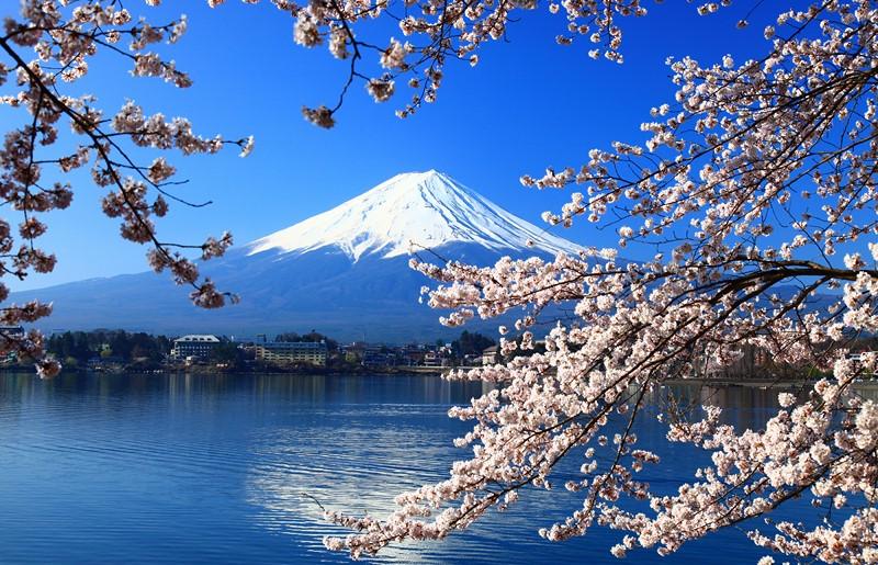 Фотообои Япония на стену