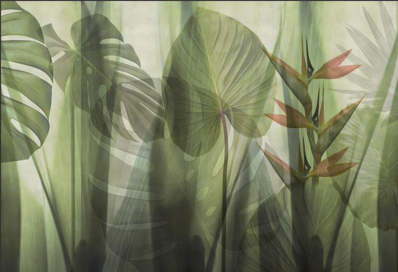 Фотообои Листья пальмы