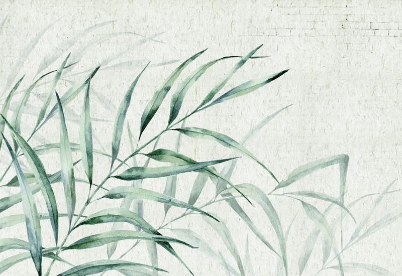 Фотообои Трава на фоне