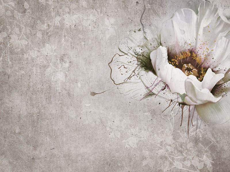 Фотообои Цветок на стене