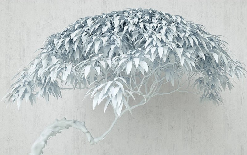 Фотообои Белое дерево