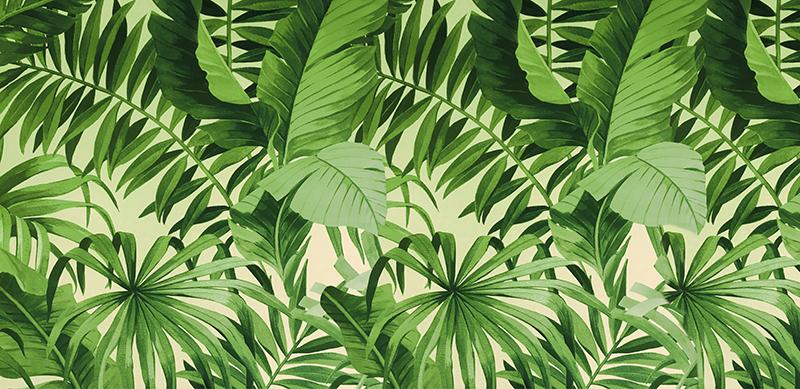 Фотообои Зелёный рай