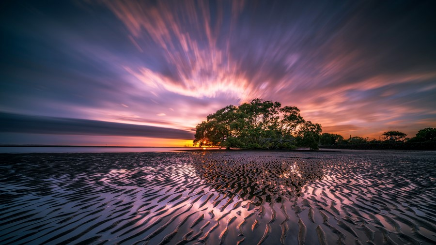 Фотообои Лиловый закат