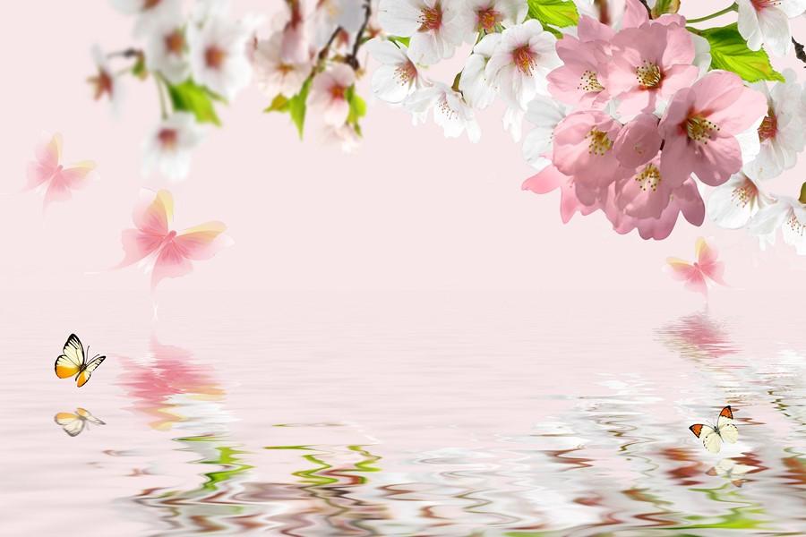 Фотообои Нежные розовые цветы