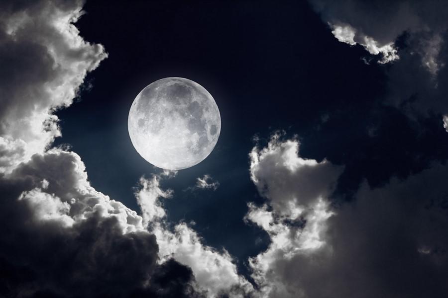 Фотообои Свет Луны