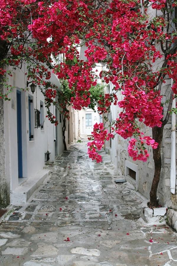 Фотообои Греческая улица