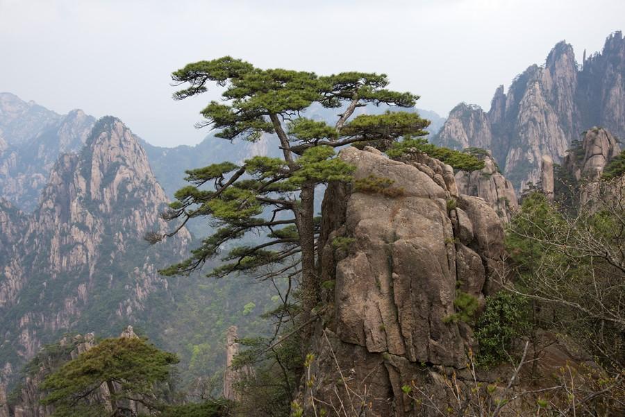 Фотообои Горы Хуаншань