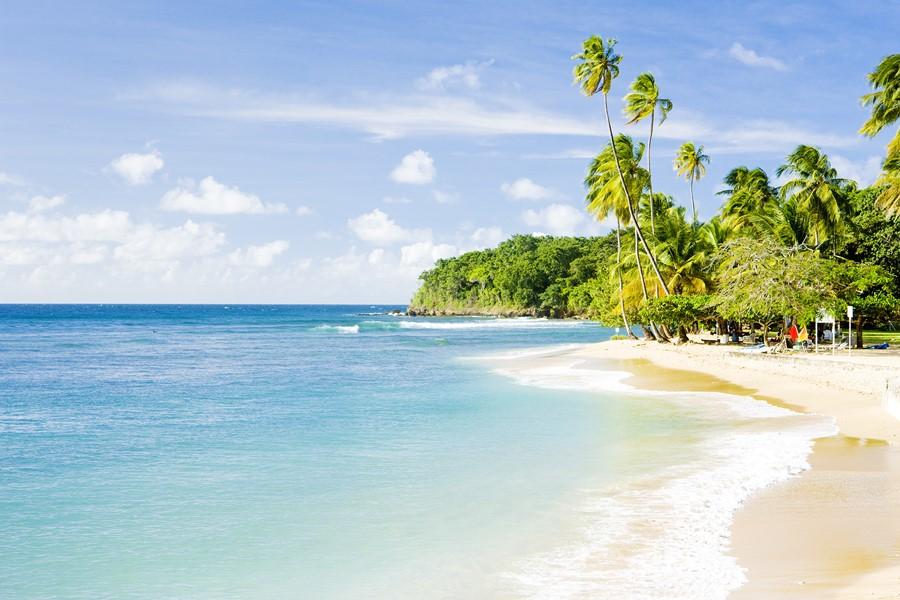 Фотообои Пляж Тобаго