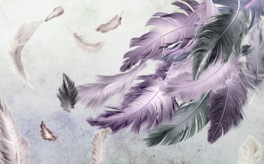 Фотообои Птичьи перья