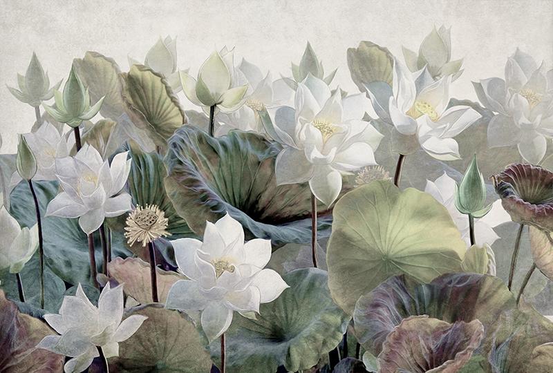 Фотообои Водные цветы