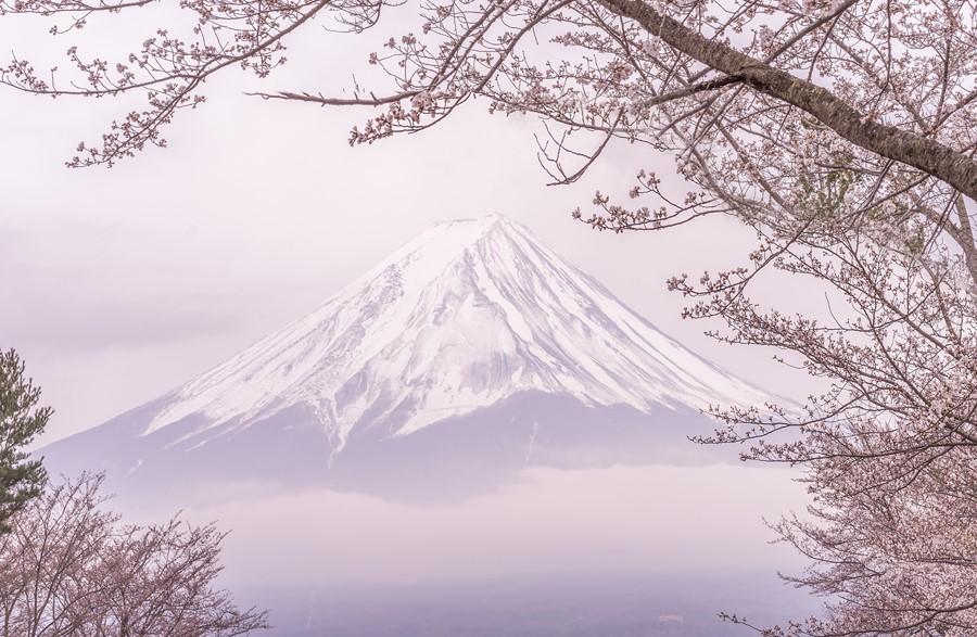 Фотообои Фудзияма Япония