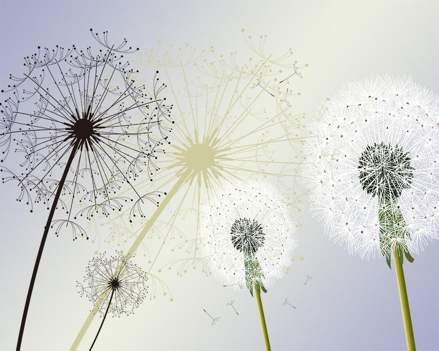 Фотообои Зонтики одуванчиков