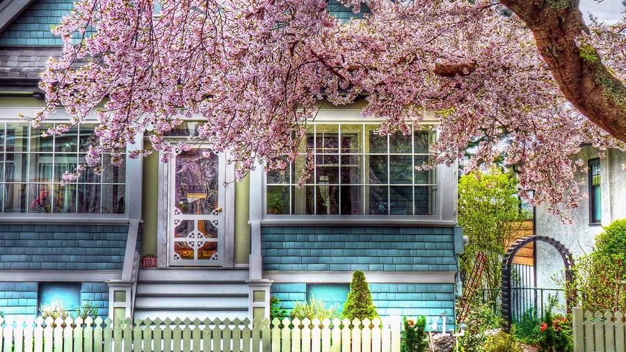 Фотообои Весенний домик
