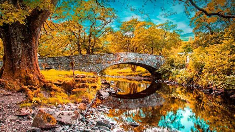 Фотообои Кирпичный мостик