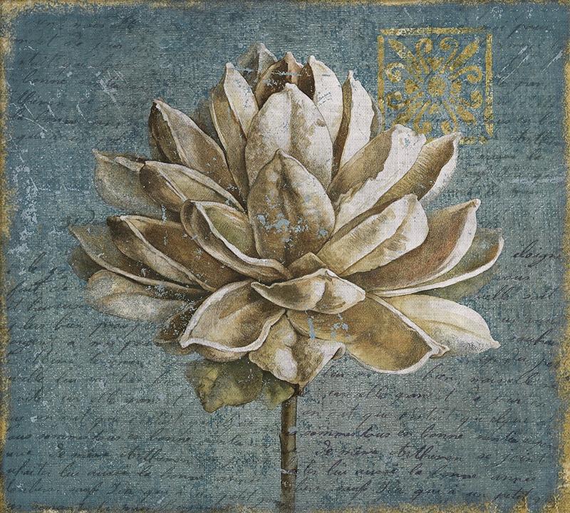 Фотообои Домашнее растение