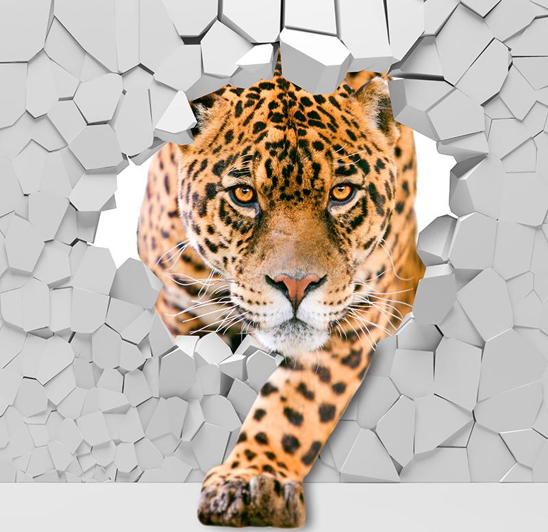 Фотообои Взгляд леопарда