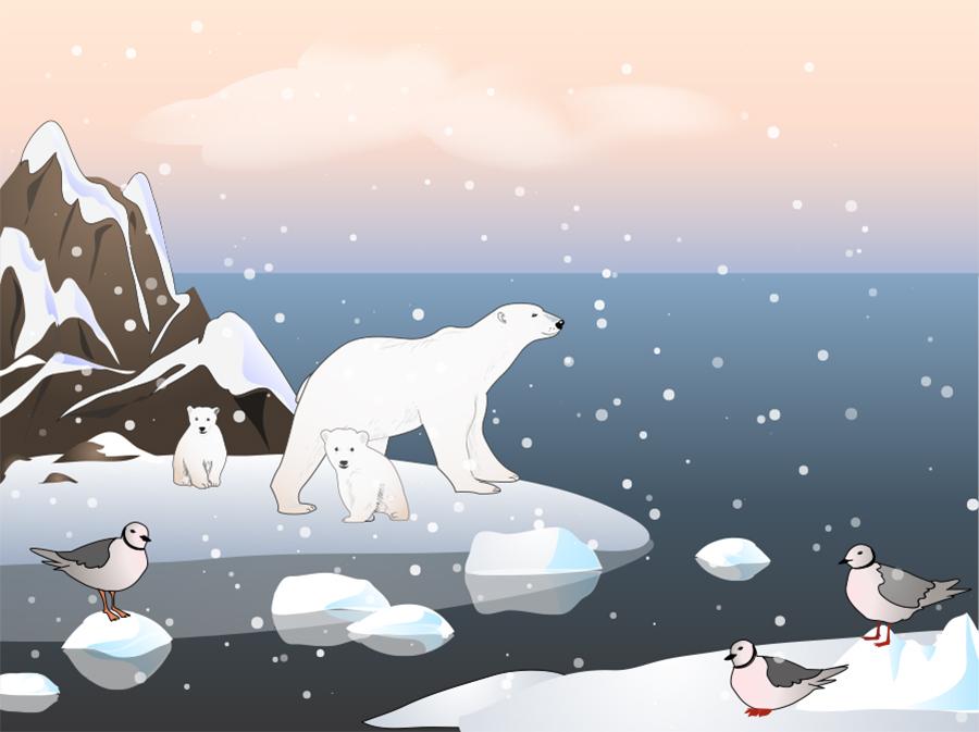 Фотообои Среди льдов