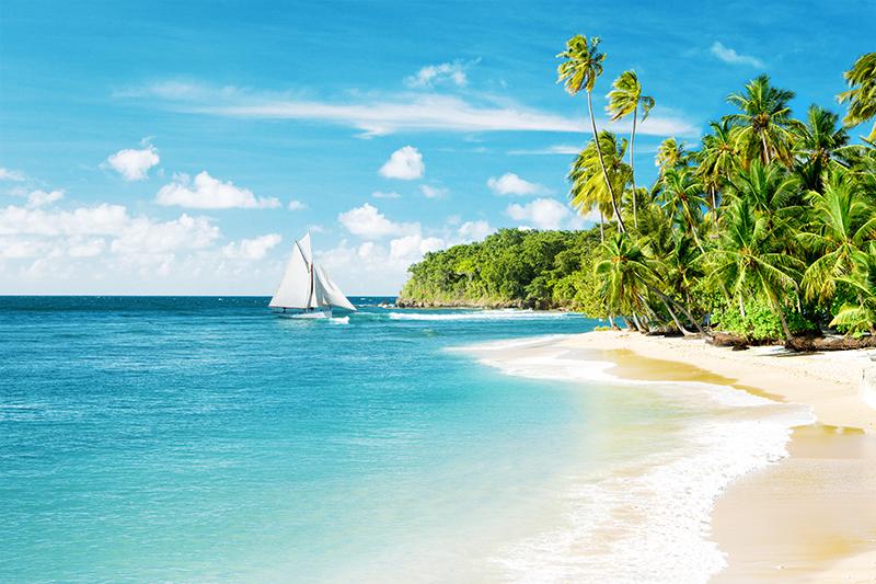 Фотообои Зелёный пляж