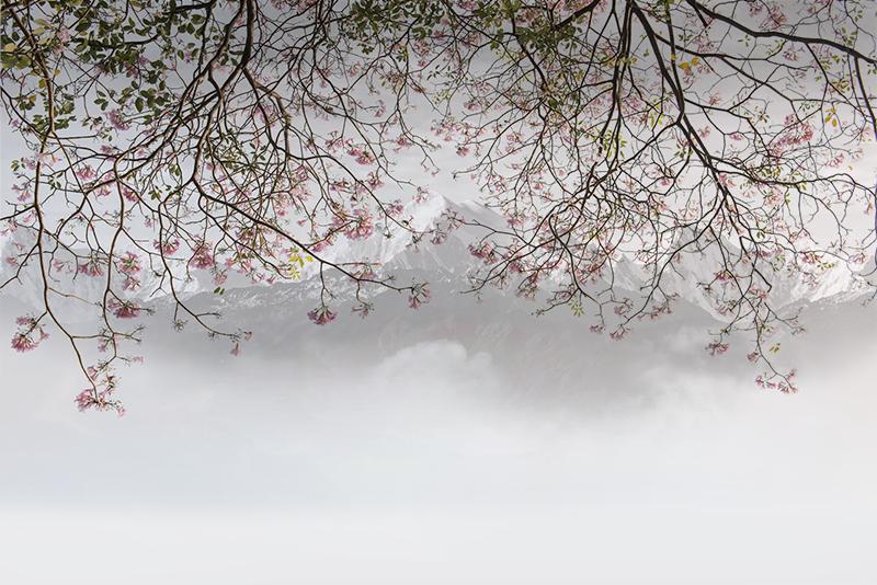 Фотообои Горы и сакура
