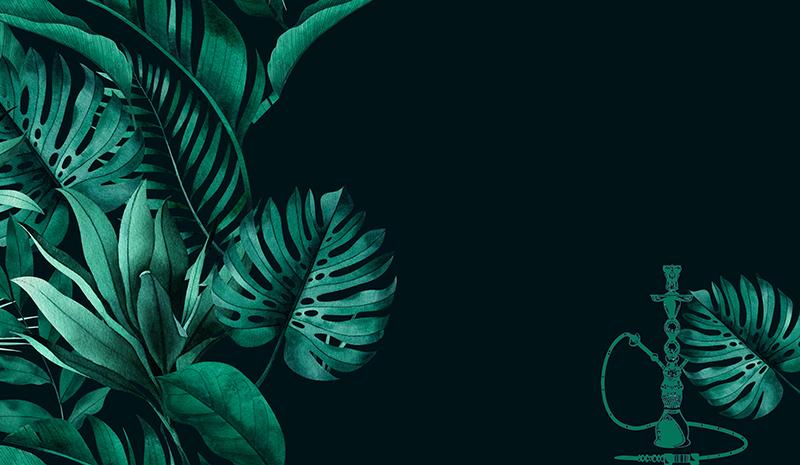 Тёмные тропические листья